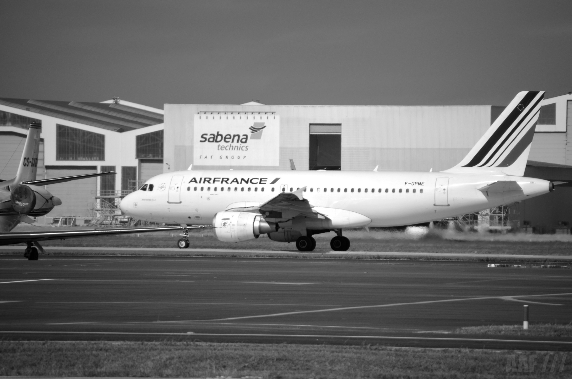 A319 Air France AAF_Aviation