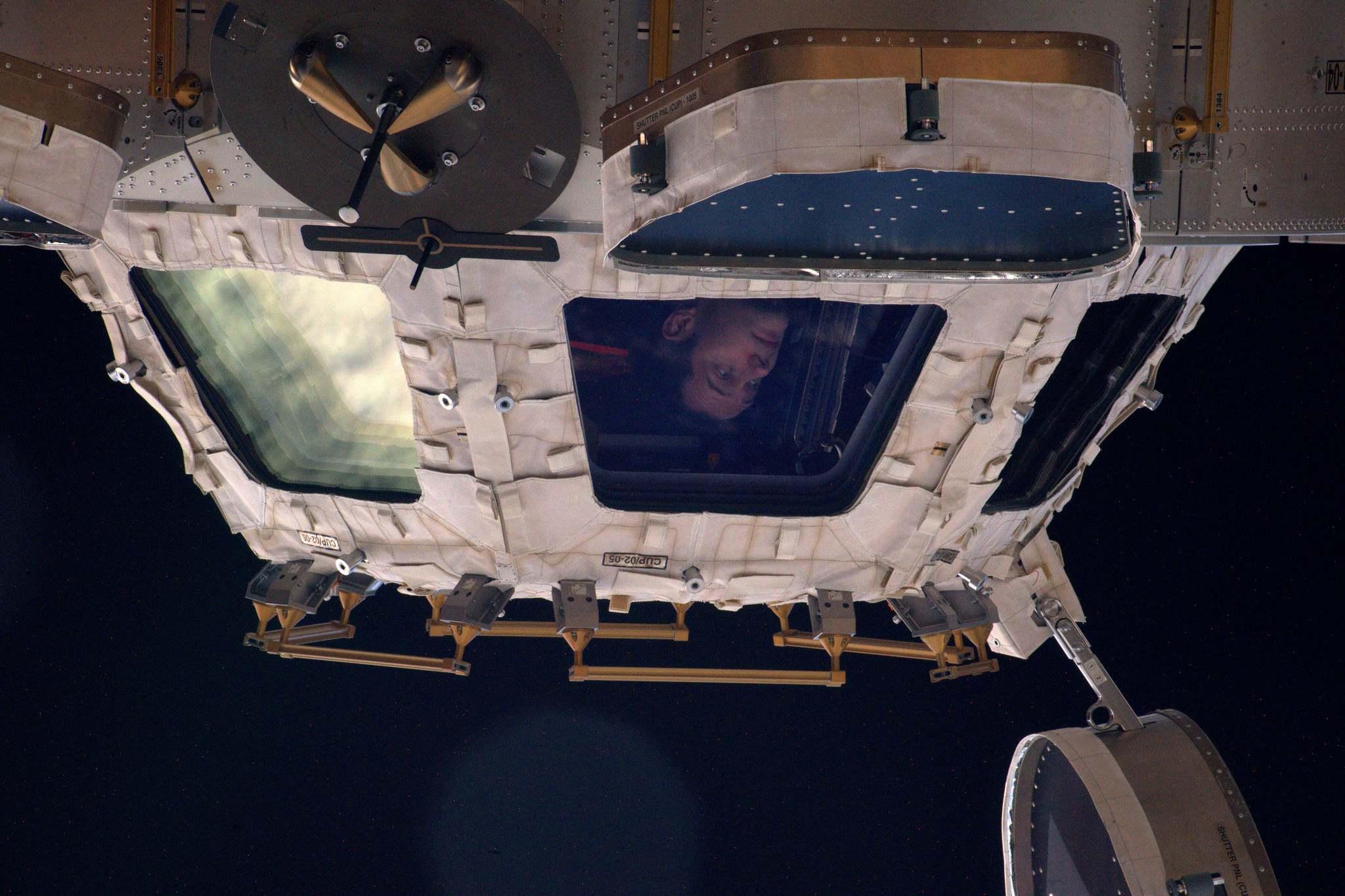 Thomas Pesquet dans le module d'observation cupola