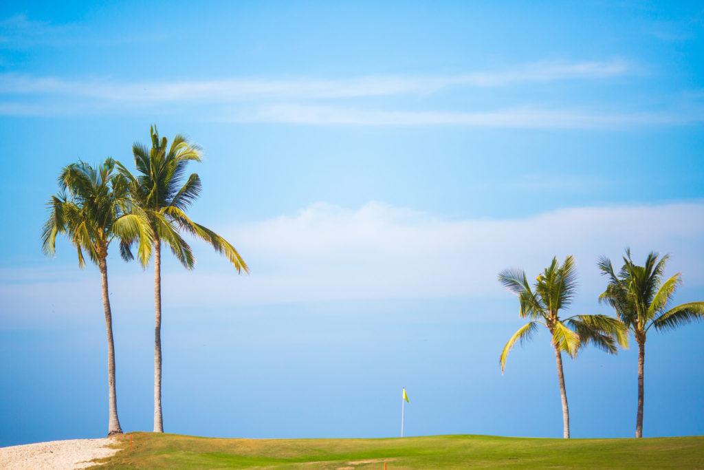 Golf et Cocotiers