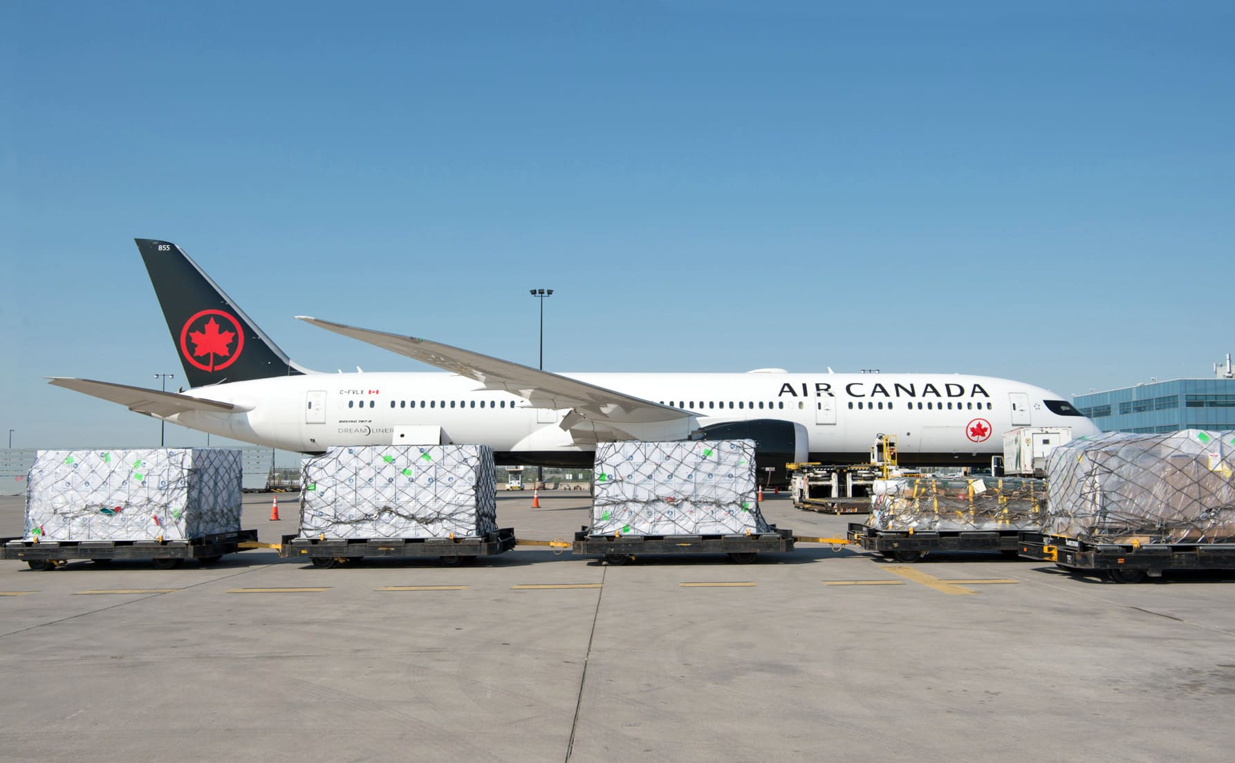 B787 Air Canada avec du fret